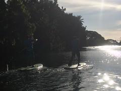 Hiro and Nozo (twobit94) Tags: paddleboard nozo hiro anahuluriver haleiwa northshore sunset okinawavisitsoahu