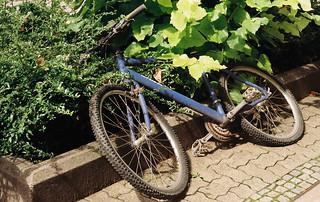 Fahrrad, das in der Gegend rumliegt ...
