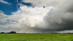 Rainbow chasing (Ellen van den Doel) Tags: natuur netherlands nature overflakkee nederland weer weather clouds goeree summer 2017 rainbow lucht augustus trotsopflakkee sky outdoor landscape rain holland landschap