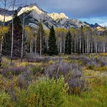 A Meadow and Aspen Trees to Take in the Canadian Rockies (Banff National Park) thumbnail