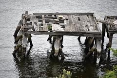 still standing (sabinakurt_photo) Tags: water sydney australia nikon oldpier city