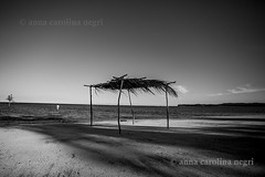 Bahia (ACNegri) Tags: bahia baiana baiano brasil brazil brasileiro brazilian brasileño brazilians brasileiros brazilianbeauty pb bw preto branco praia beach decoração decorar venda quadro cabana