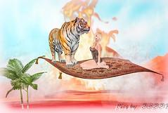 Magic Carpet Series  1 (4) (Poppys_Second_Life) Tags: 1001nights 2l arabiannights fantasy flyingcarpet magiccarpet myth onethousandandonenights picsbyⓟⓞⓟⓟⓨ popi popisadventuresin2l popikone popikonesadventuresin2l poppy sl secondlife virtualphotography desert tiger ألفليلةوليلةalflaylawalayla