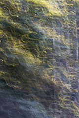 DANCE OF CHANGE (Deborah Hughes Photography) Tags: abstract abstractnature abstractphotography icm intentionalcameramovement impressionism intentionalcameramovment impressionistphotography impressionistic experimentalphotography