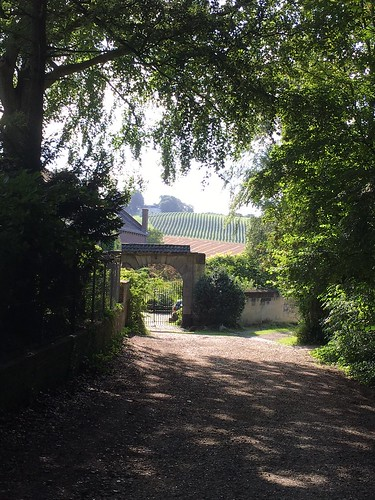 view on Apolstelhoeve