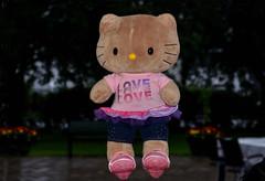 Kitty (Build-a-Bear) (Linnea from Sweden) Tags: kitty buildabear teddy bear toy still life naturmort nikon d7000 nikkor afs 70300mm 4556g ifed vr
