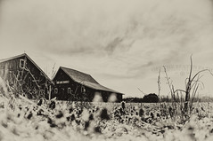 Bullet In The Heartland (Off The Beaten Path Photography) Tags: barn barns indiana indianapolis development realestate choppingblock farm america farming nikon