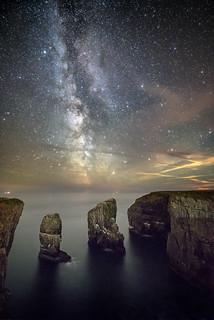 Elegug stacks - Pembrokeshire