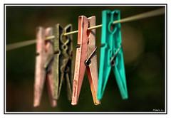 Sortie du lot (marc.lacampagne) Tags: pince old agée dof canon closeup tamron 90mm 28 detail fil linge ngc hdr digital camera club