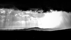Sturm Und Drang (@WineAlchemy1) Tags: sturmunddrang soave veneto italy weather hailstorm blackandwhite vineyards illasi grandinata noiretblanc italia blackwhite noireblanc neroebianco