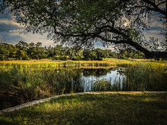 Peaceful Day (Jims_photos) Tags: water wimberleytexas texas trees outdoor outside adobelightroom adobephotoshop shadows sunnyday daytime jimallen jimsphotos jimsphotoswimberleytexas lightroom llano cloudy clouds nopeople iphone7