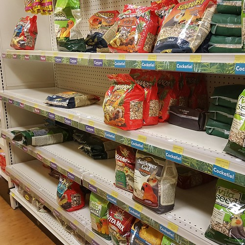 Even parrot food was in demand pre-Irma