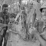Vietnam War 1968 - U.S. Soldier comforts young crying Viet Cong picked up near Soc Trang thumbnail