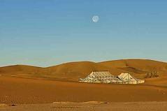 ergchegaga (solomansalamy) Tags: tours xabbitours trip desert sunset heritage morocco dunes camel sahara sun rise beach sea