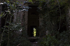 Double entrance (Milena Galizzi) Tags: villa de vecchi infested spirit house ghost red double entrance door window architecture abandoned forgotten