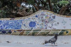 2017/08/19 12h20 pigeon, parc Güell (Barcelone) (Valéry Hugotte) Tags: 24105 barcelona barcelone espagne gaudi güell spain banc canon canon5d canon5dmarkiv céramique mosaïque parc pigeon trencadis catalunya es