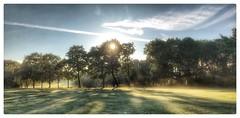 Morning from Handsworth- Birmingham uk (hussey411) Tags: photographer photography iphone7plus iphone morning sun sky golfcourse birmingham uk