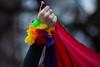 yes (brinypickle2012) Tags: marriageequality ssm samesexmarriage postalsurvey australia tasmania hobart rainbows rally