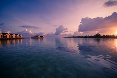 Tranquil sea (icemanphotos) Tags: relax sunset seascape twilight loungers tranquility horizon maldives sunrise sea beach ocean travel nature sky vacation water summer island landscape beautiful tropical exotic dusk dawn nobody coast tranquil bay orange idyllic background paradise sun sand sunlight coastline evening caribbean palm resort bora atoll jamaica romantic light heaven outdoors color luxury holiday wave purple cloud
