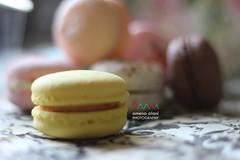 Yellow (amuna_caty) Tags: macaron macarons dessert sweet cookies color food cake photo photography canon