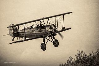 Flew The Coop!