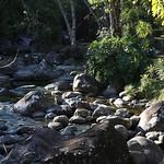 o rio (12)