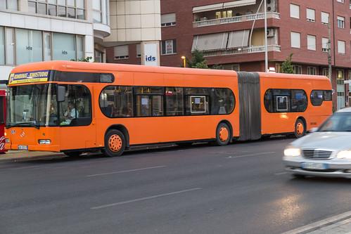 bus, Tiranë