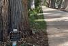 Sgt S.W. Pead memorial marker (i-lenticularis) Tags: 23jun2jul2017 k1 kingspark wa westernaustralia australia au