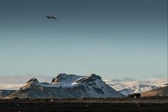 Islande falaise, 11 (Patrick.Raymond (5M views)) Tags: islande montagne falaise hdr nikon plage mer nikonflickraward expressyourself