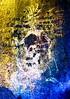 DSC07616 gepuffert_labi (HerryB) Tags: 2017 southafrica afrique afrika namibia namib südwest sonyalpha77 sonyalpha99 tamron alpha sony bechen heribert heribertbechen fotos photos photography herryb rockart rockpaintings peintures rupestres peinturesrupestres san zeichnungen felszeichnungen höhlenmalerei paintings bushmen buschmänner dstretch harman jon jonharman enhance falschfarben restauration digitalenhanced enhancement verwitterung granit granite weathering spitzkoppe erongogebirge erongo shaman schamane trance vandalisiert vandalisme vandalism grosfigur therianthrop wasserwesen schwerelosigkeit weightlessness weighless therianthropie