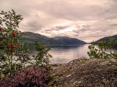 the Loch (grahamd4) Tags: scotland landscape loch fuji hs10 fujihs10