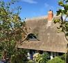 Sommerhaus (il.ka15) Tags: tür fenster door windows reetdach ostsee sommer haus house ammeer hagebutten blumen