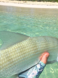 Bahamas Bonefishing Lodge - Abaco Island 29