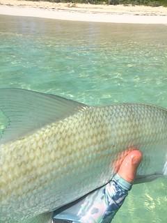 Bahamas Bonefishing Lodge - Abaco Island 29