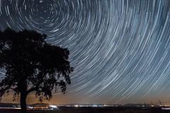 +Startrails Circumpolar (Jesus DTT) Tags: circumpolar stars estrellas nocturna perseidas lágrimasdesanlorenzo startrails meteorito