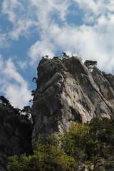 Felsen - Felswand ob dem Eingang der Gorges de Moutier ( Schlucht Canyon ) bei Moutier im Berner Jura im Kanton Bern der Schweiz (chrchr_75) Tags: christoph hurni schweiz suisse switzerland svizzera suissa swiss chrchr chrchr75 chrigu chriguhurni chriguhurnibluemailch september2017 september 2017 albumzzz201709september