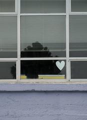heart in window (dotintime) Tags: heart white shape window sill glass pane yellow box blue frame evergreen tree dotintime meganlane
