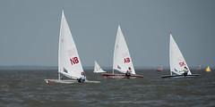 2017-07-31_Keith_Levit-Sailing_Day2062.jpg (Keith Levit) Tags: keithlevitphotography gimli gimliyachtclub canadasummergames interlake laser winnipeg manitoba singlehandedlaser sailing