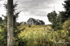 Peeking (MarieFrance Boisvert) Tags: victoriaroad bury myhouse abandoned derelict forsaken