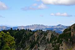 Mt. Rainier National Park (Bella Lisa) Tags: mountrainiernationalpark sourdoughmountains washington sunrisevisitorcenter degepeak mtrainier emmonsvista curlyeverlasting wildflowers wilderness nationalpark washingtonstate sunsetpoint hiking emmonsglacierevergreens pines pinetrees