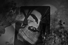 What do you see? - Was kannst du sehen? - Que voyez-vous? (One-Basic-Of-Art) Tags: poesie poetry poet nostalgie nostalgica melancholie black white schwarz weis weiss vintage retro indie körnung noir blanc einfarbig mono monochrome kreativität creative kreativ annewoyand woyand anne canoneos canon canoneos350d basteln blumen fkeur flower vertrocknet mystery fotografie photography tfp 1basicofart onebasicofart porträt portrait person human mensch poeple personen menschen feminine female weiblich frau woman girl self selfportrait selbstportrait selbst ich