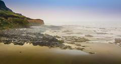 The Oregon coast (Eve Photography By JC Clemens) Tags: florence oregon unitedstates us drone dji mavic pro coastline beach ocean rocks birds ariel lightroom