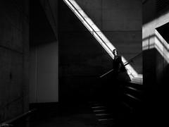 silver streaks (René Mollet) Tags: silver streaks underground downstairs blackandwhite street streetphotography shadow silhouette streetart streetphotographiebw man urban urbanstreet urbanlife candite penf renémollet frick trainstaion