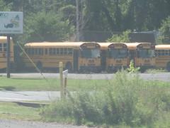 Leprechaun Lines Sales Buses (ThoseGuys119) Tags: midstatebusservicesinc schoolbus ic fe re newburghny