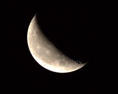 _MG_1018.CR2 (jalexartis) Tags: moon waning waningmoon waning419 dark afterdark night nightphotography nightshots lighting canonef400mmf56lusmlens canonextenderef2xiii 800mm 400mmx2
