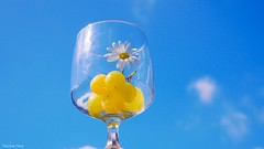 Summer II (YᗩSᗰIᘉᗴ HᗴᘉS +7 000 000 thx❀) Tags: fruit flower summer été blue verre glass cristal macro hensyasmine