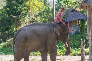 trekking chiang mai - thailande 5