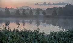 Ducks (Jorden Esser) Tags: middendelfland ducks fog grass hss layers pond sliderssunday trees waterscape reflection