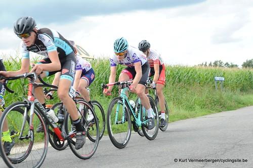 Omloop Vlaamse gewesten (359)