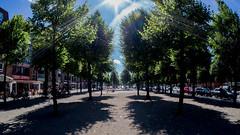 Große Straße von der anderen Seite - voll in die Sonne (p.schmal) Tags: olympuspenepm2 samyang7 5mmmftahrensburggrosestrase
